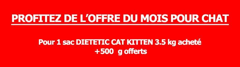 Promotion juillet chat 2015